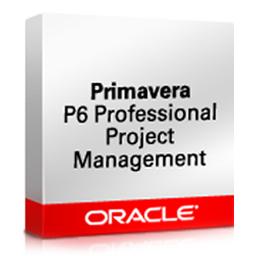 Oracle Primavera P6 Enterprise Project Porfolio Management (EPPM)