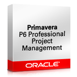 Oracle Primavera P6 Enterprise Project Porfolio Management (EPPM)