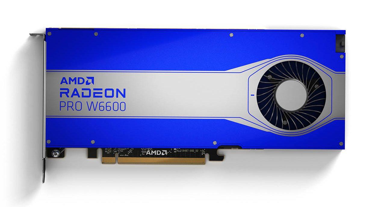 AMD Radeon Pro W6600 with 8 GB GDDR6 memory